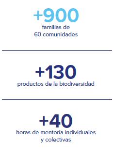 Mercado Libre ayuda a 900 familias a crear emprendimientos en el Amazonas