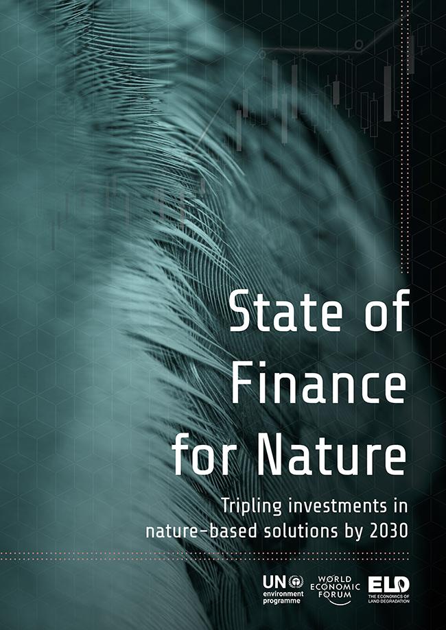 wwf-la-financiacion-de-soluciones-basadas-en-la-naturaleza-debera-triplicarse-para-abordar-con-exito-las-crisis-del-clima