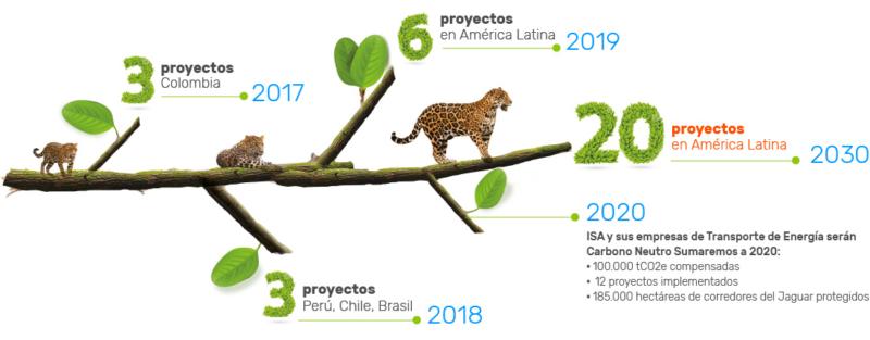 conexion-jaguar-el-proyecto-de-isa-para-mitigar-el-cambio-climatico