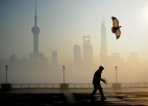 china-lanza-el-mercado-de-carbono-mas-grande-del-mundo