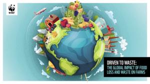 wwf-reporta-un-aumento-preocupante-en-el-desperdicio-de-alimentos-a-nivel-global